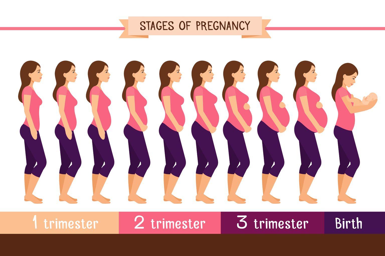 حاسبة الحمل تعرفي على عمر جنينك بالحسابات الدقيقة