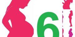 الشهر السادس من الحمل وتطورات الجنين واهم النصائح للحفاظ عليه وعلى صحتك