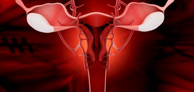افرازات الحمل
