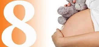 الشهر الثامن من الحمل